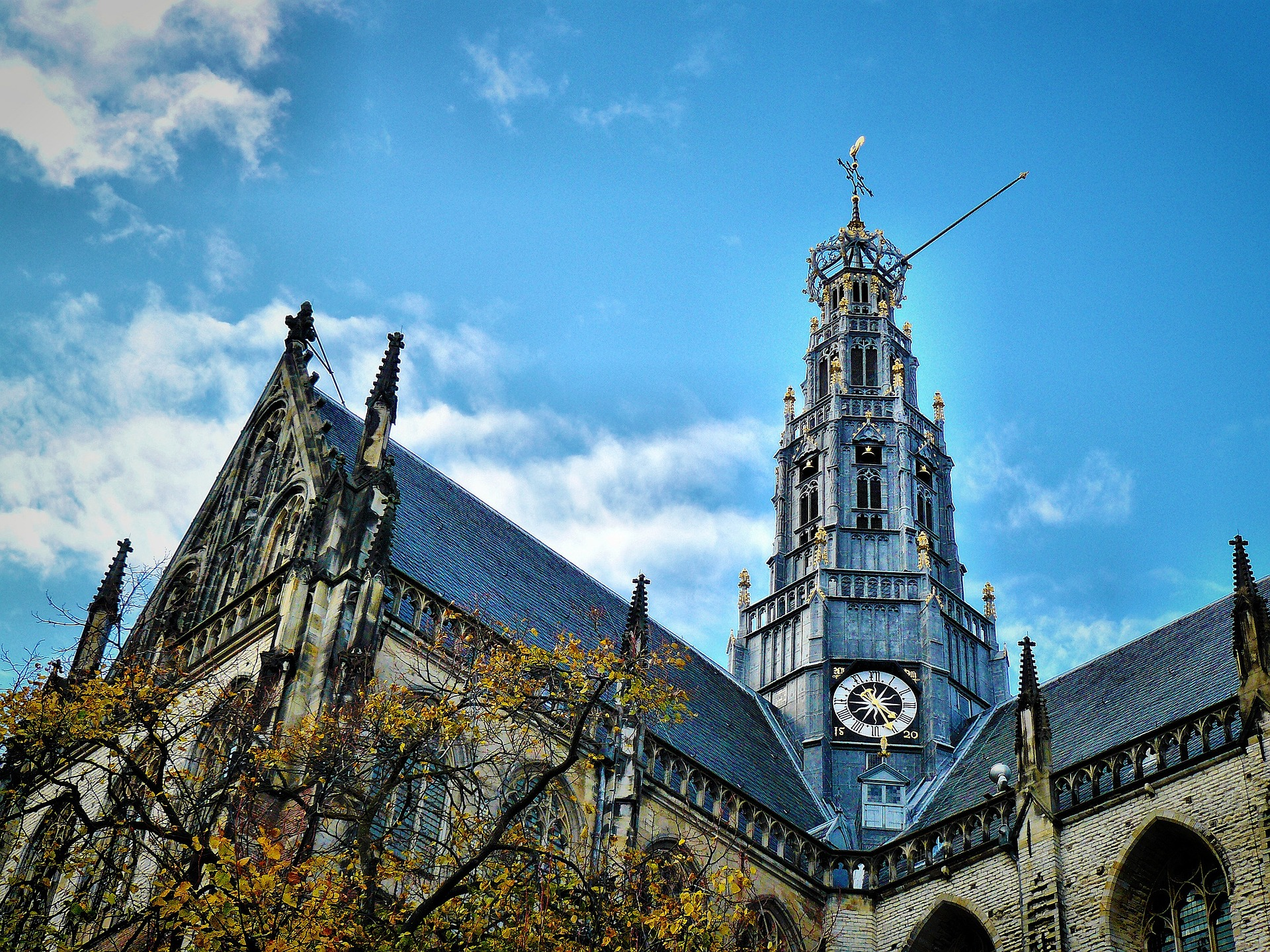 Haarlem Bavo
