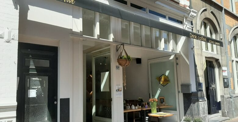 Hotspot Haarlem: The Hive