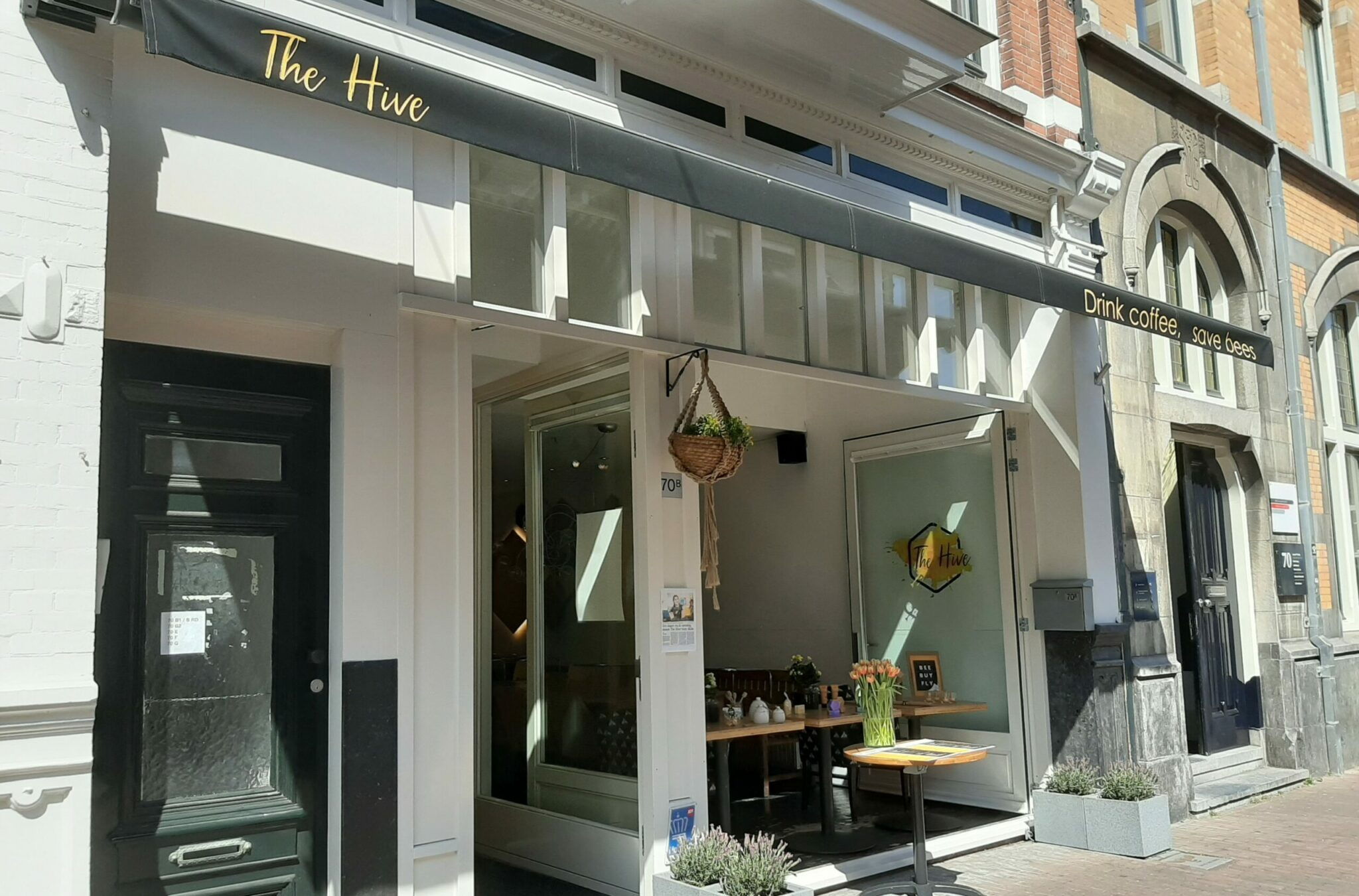 Hotspot Haarlem: The Hive
