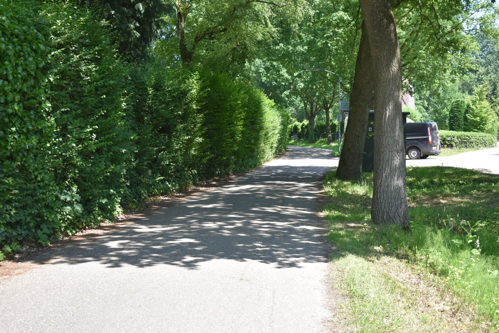 verliefd-laantje-vanaf-aarle-rixtelseweg