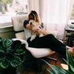 hondenbelasting honden
