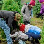 Kerstboom kopen Helmond 001