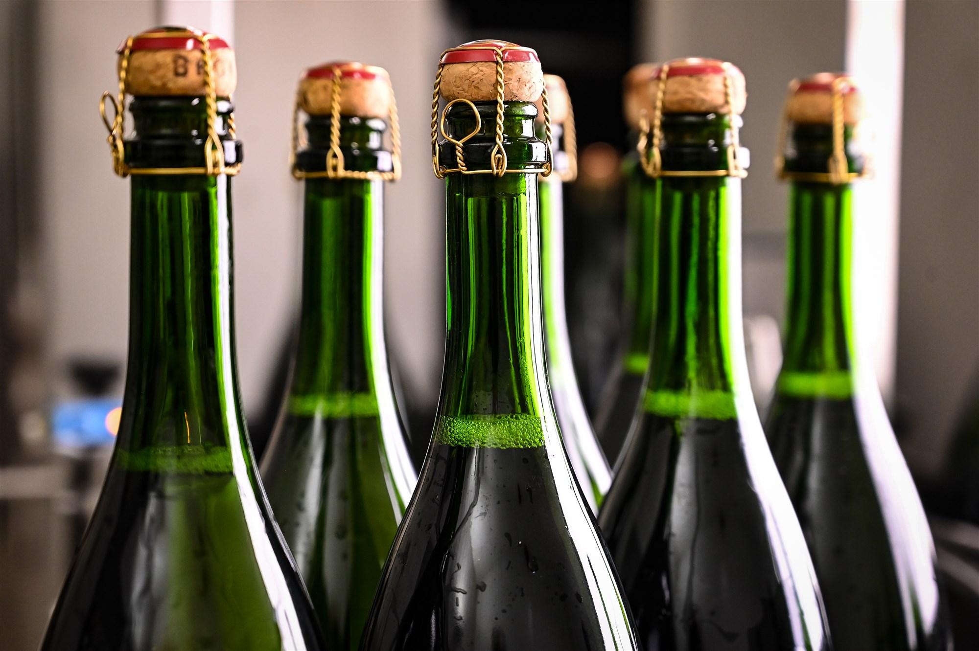 ANP-426015427 champagne