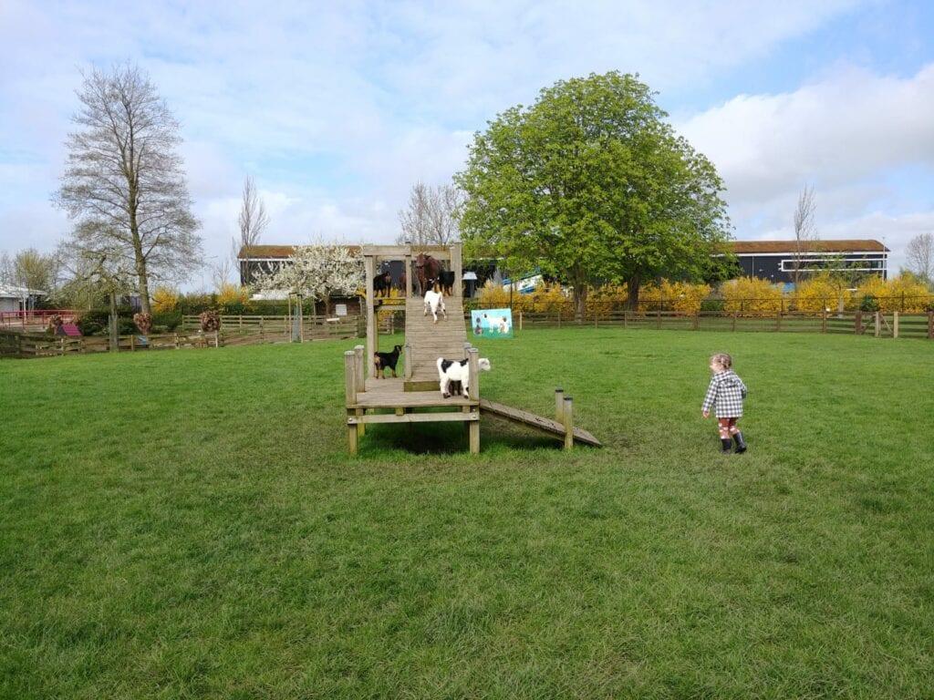kinderboerderij binnenmaas recreatieoord