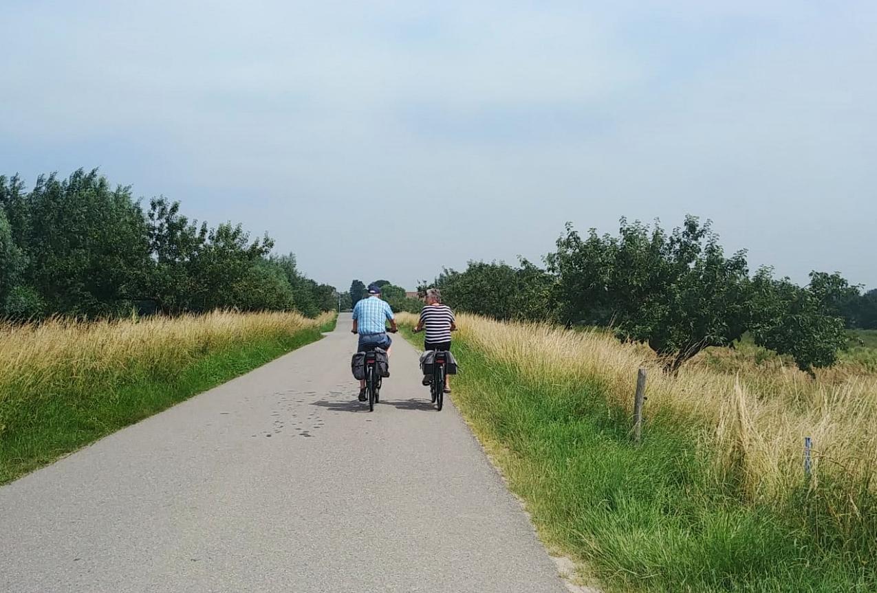 fietsen hoeksche waard dijken polders