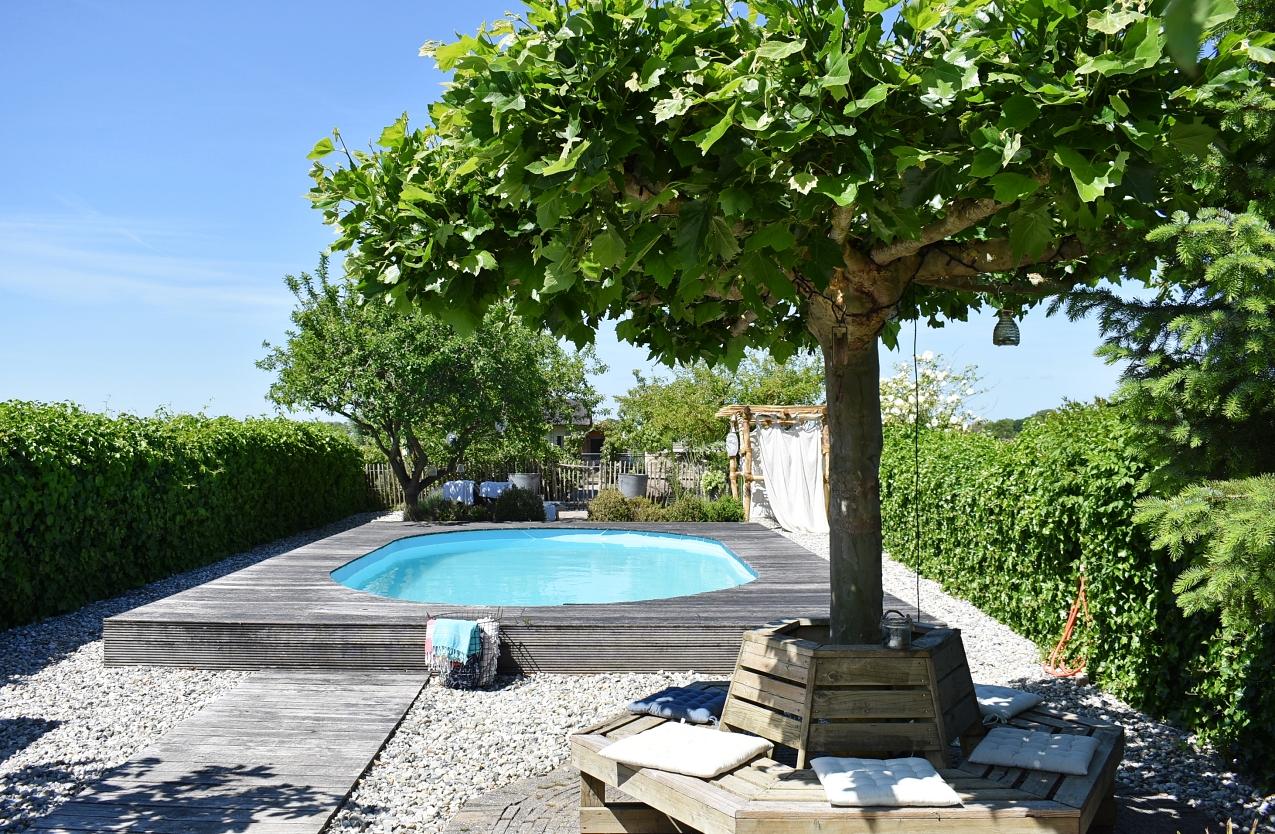 zwembad tuin zomer