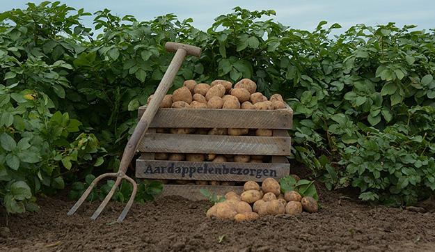 Aardappelenbezorgen.nl