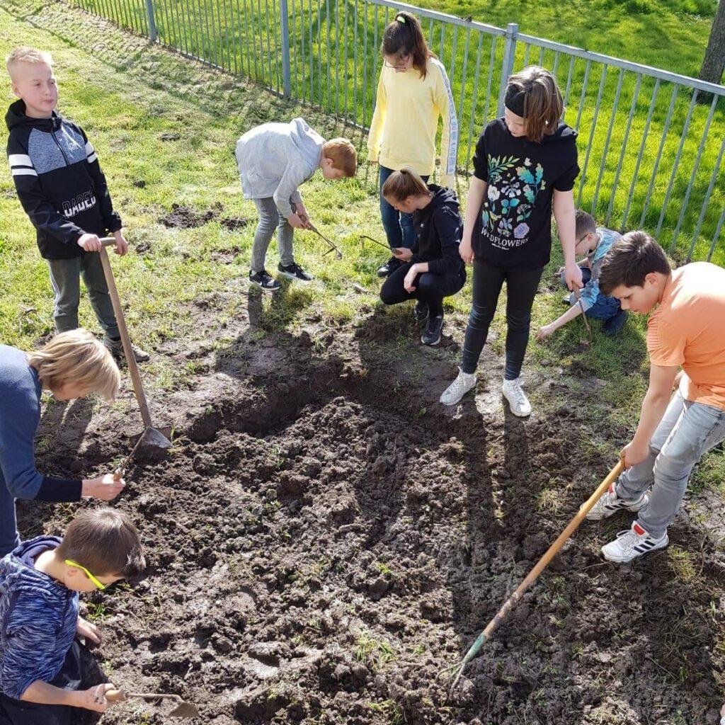 Basisschool 't Kompas Den Bommel moestuin