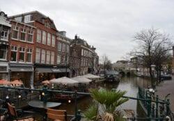 Nieuwe Rijn Cafes