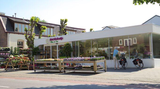 tuincentrum nijmegen