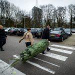 kerstbomen Nijmegen