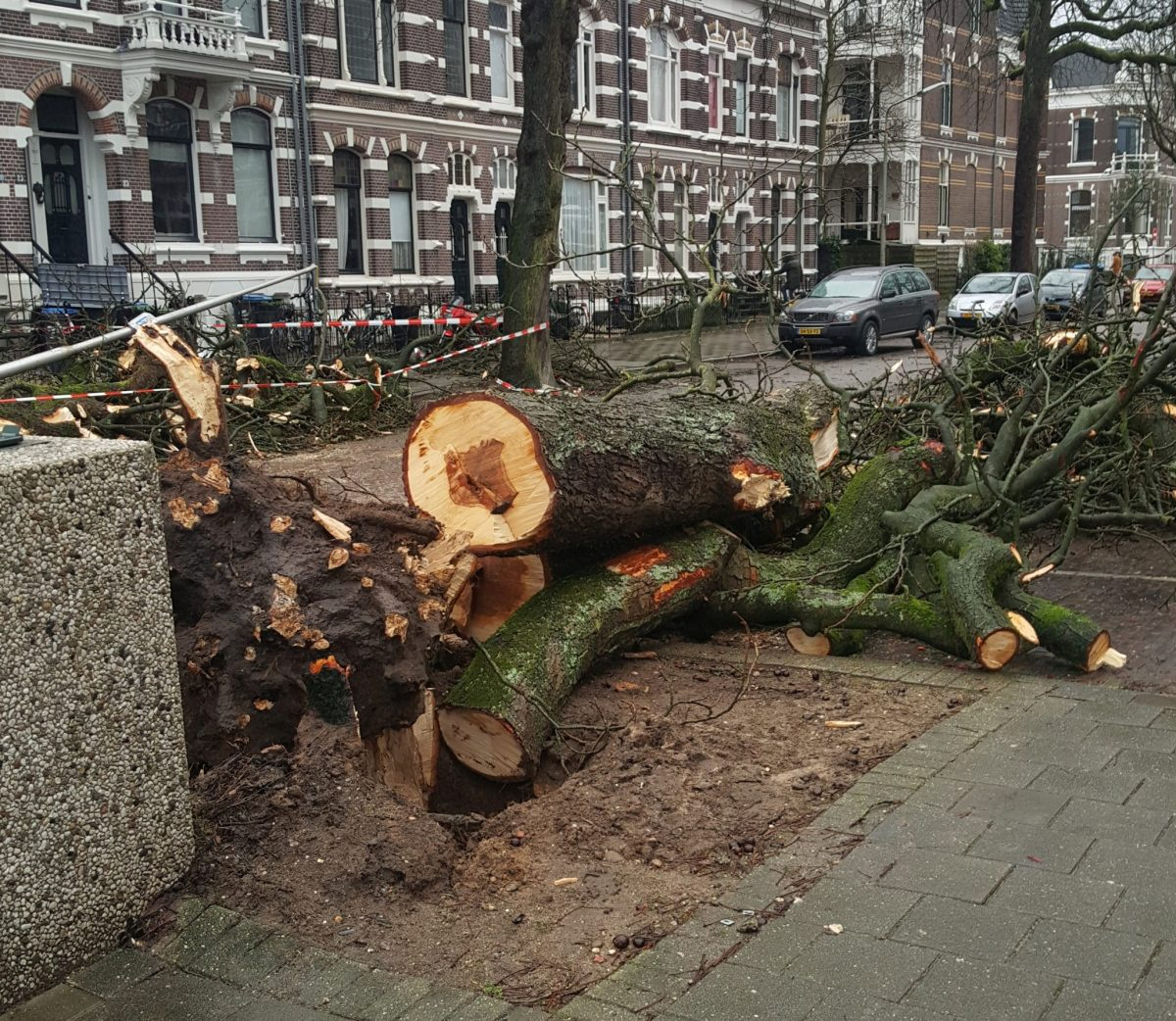 Van Slichtenhorststraat