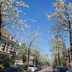 wonen in Nijmegen