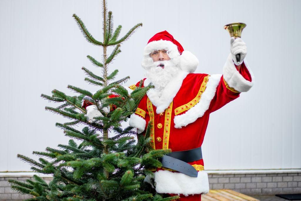 kerstbomen in Nijmegen