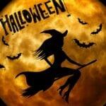 Halloween in Harderwijk