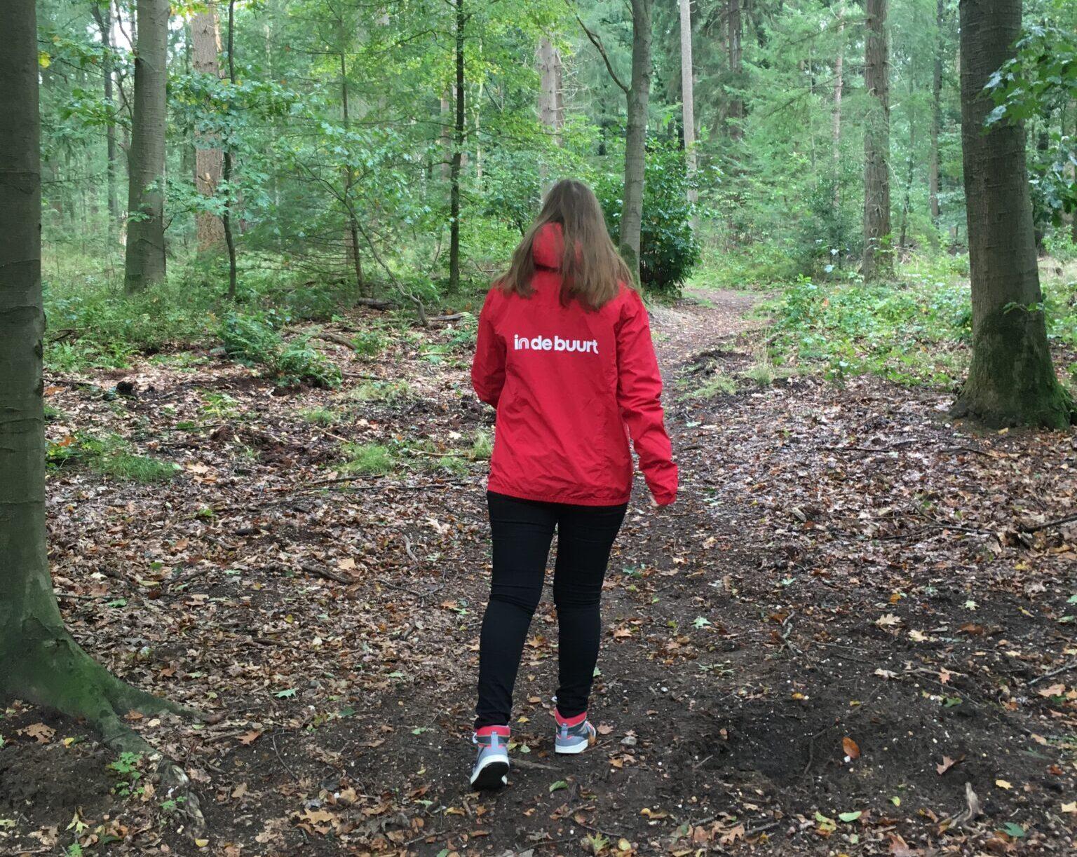 Wandelen in het bos veluwe wandelen bomen putten harderwijk ermelo weersverwachting oktober