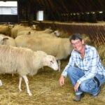 Marion Derks bij een deel van de Schaapskudde in Ermelo. Dierendag 2020 harderwijk ermelo putten dieren