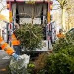 kerstbomen inleveren in Ermelo