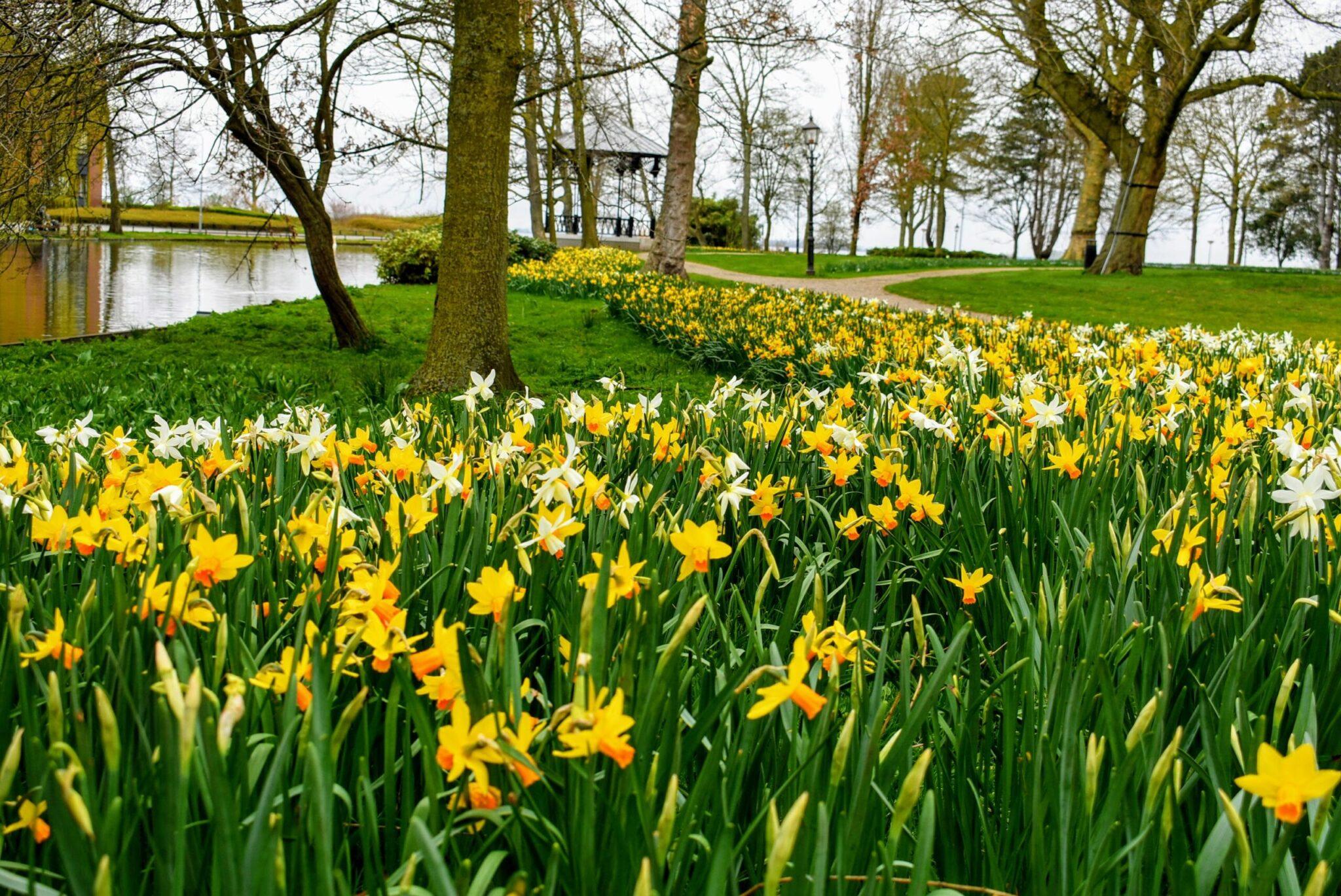 Pasen 2021 Lente in Harderwijk, Ermelo en Putten.