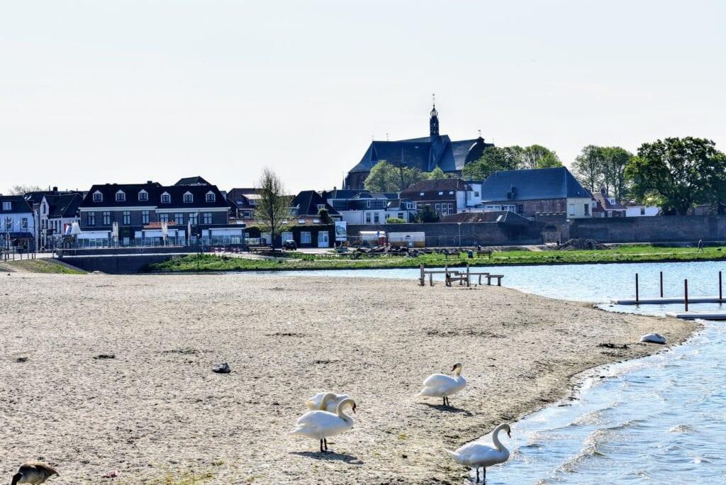 Strandeiland Harderwijk Strand Horst Strand Nulde zwemmen in open water