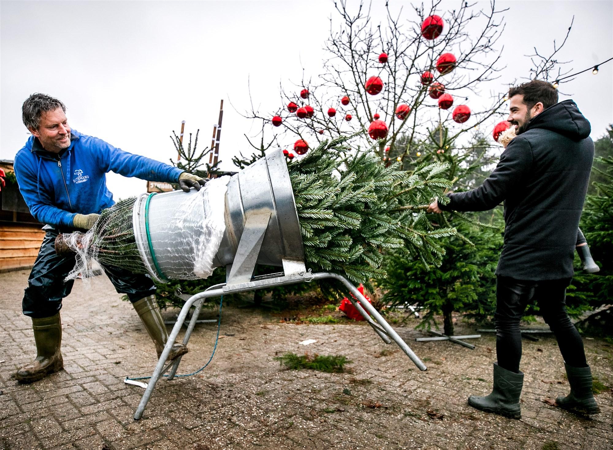 kerstboom netje pmd restafval weggooien harderwijk ermelo putten kerstbomen