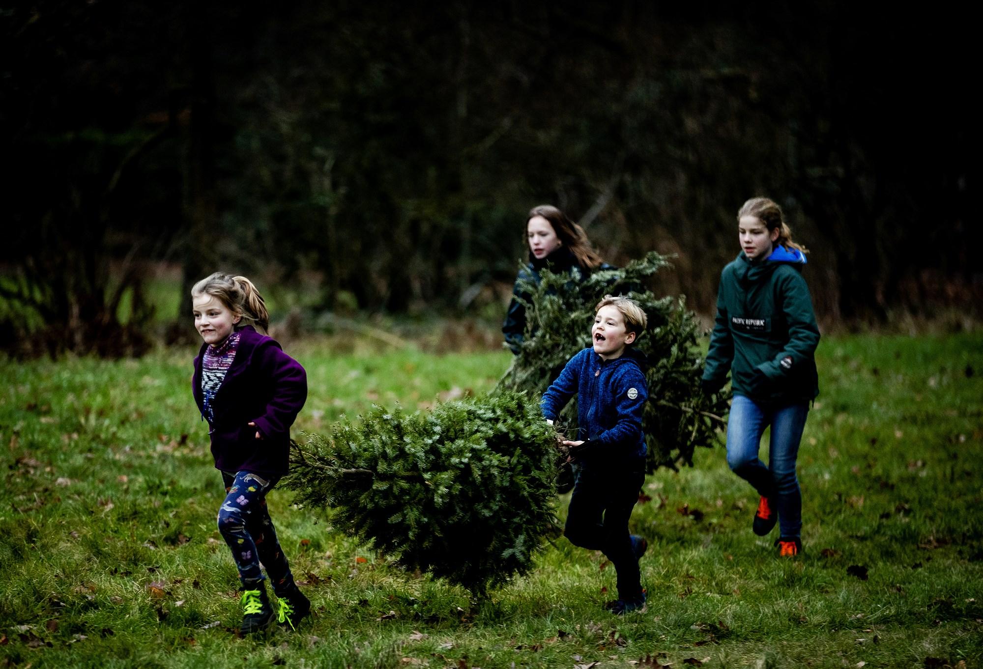 kerstboom inleveren weggooien harderwijk 2020 2021