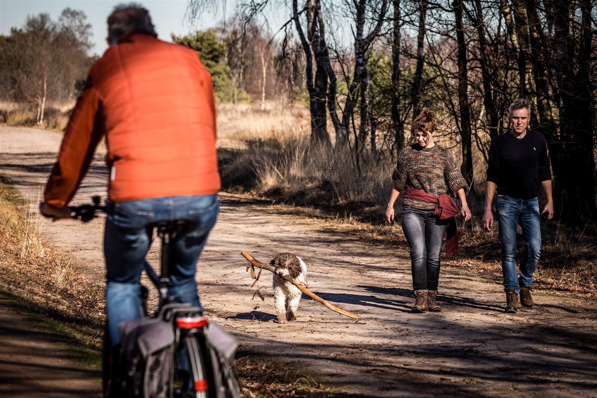 hond uitlaten vrij zonder riem losloopgebied los lopen hond ermelo harderwijk putten