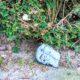 beschilderde stenen harderwijk kei