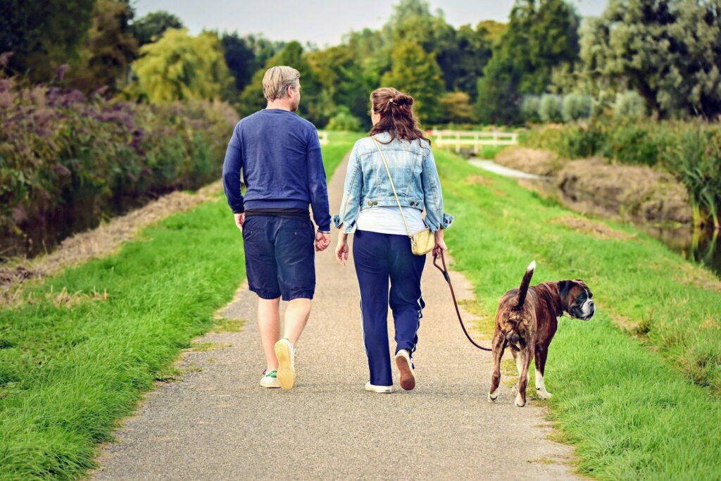 hond loslopen tijdelijk verbod ermelo aanlijngebied