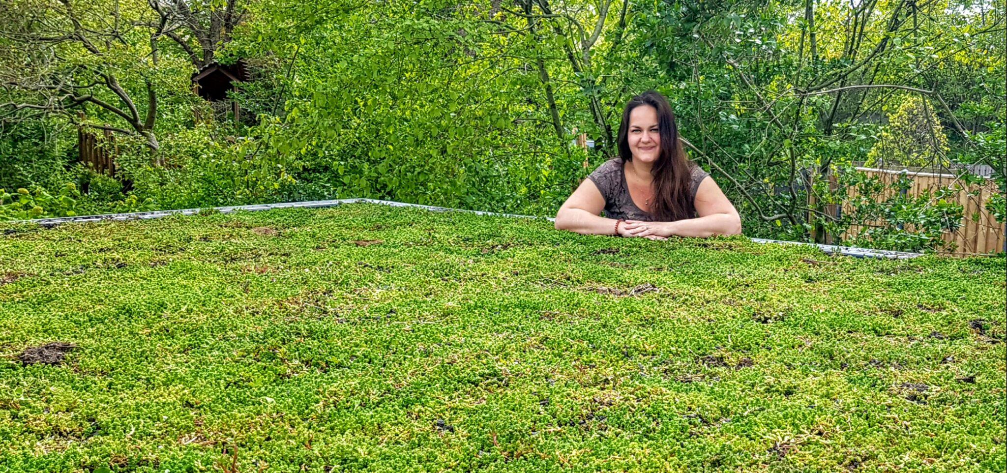 roos groen dak