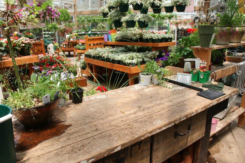 tuincentrum tuincentra harderwijk ermelo putten veluwe