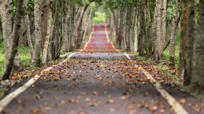 weersvoorspelling oktober herfst harderwijk ermelo putten