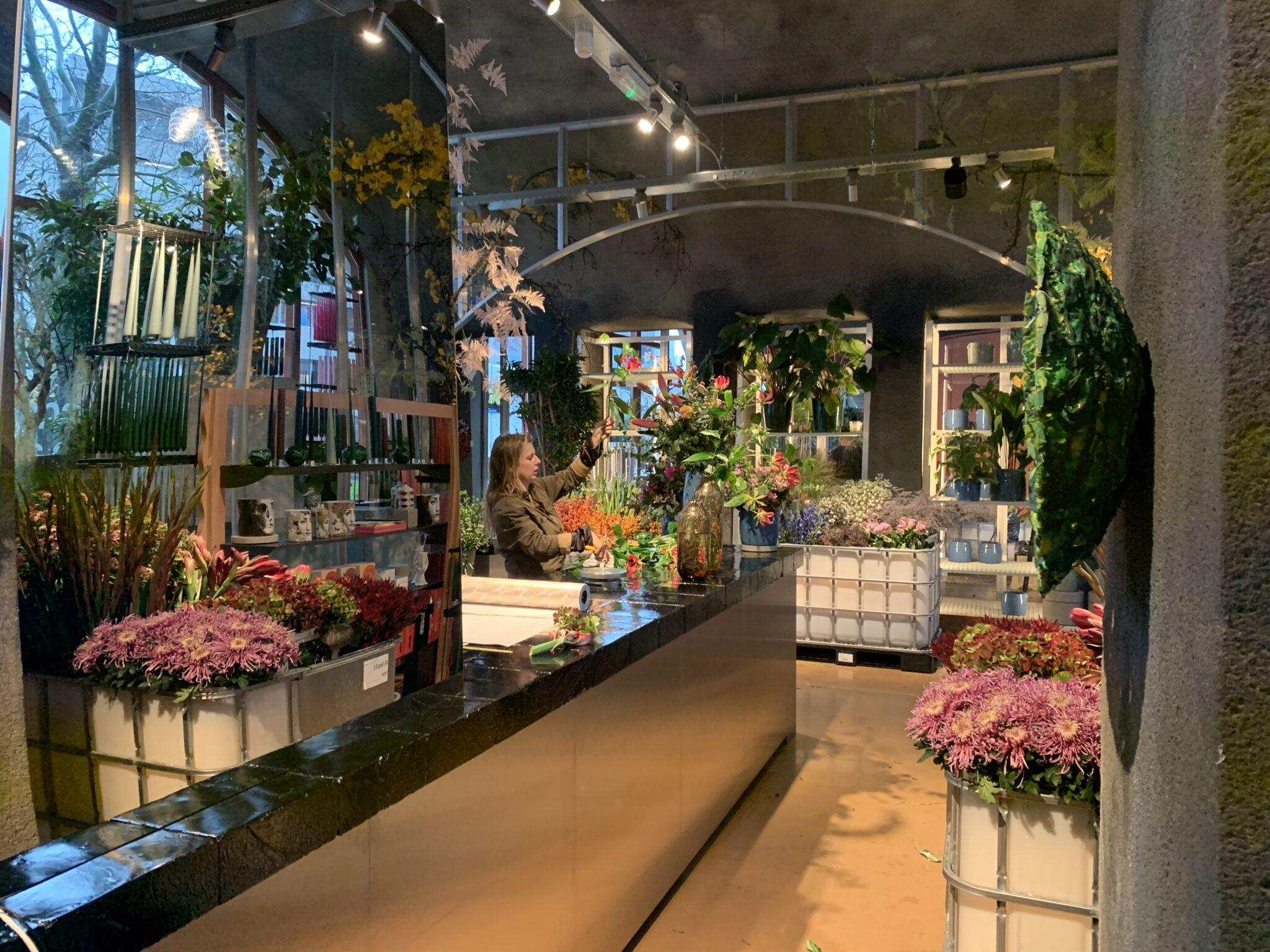S Zomers In De Hofbogen Is Open En Misschien Wel De Mooiste Winkel Van Rotterdam Indebuurt Rotterdam
