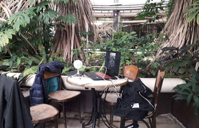 Zoo Inside