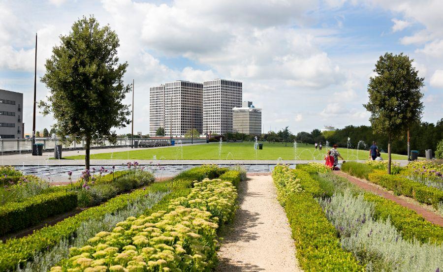 Dakpark Rotterdam West