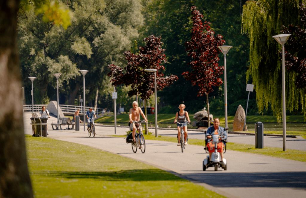 Aantal bomen in Rotterdam Zuiderpark