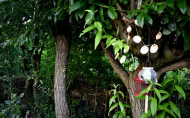 schelpenketting in boom tuinhuis