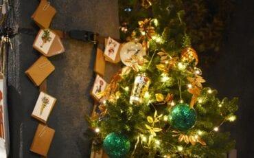 Kerstboom 's Zomers Rotterdam