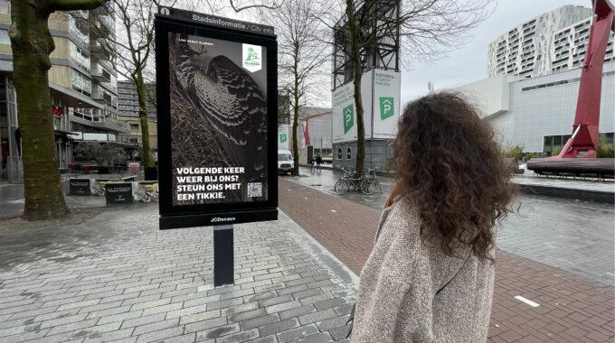 gieren broeden op het Schouwburgplein