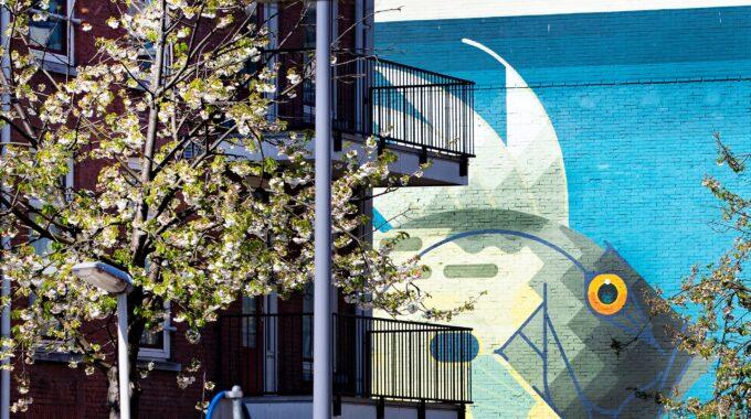 Noordplein lente bloesem street art