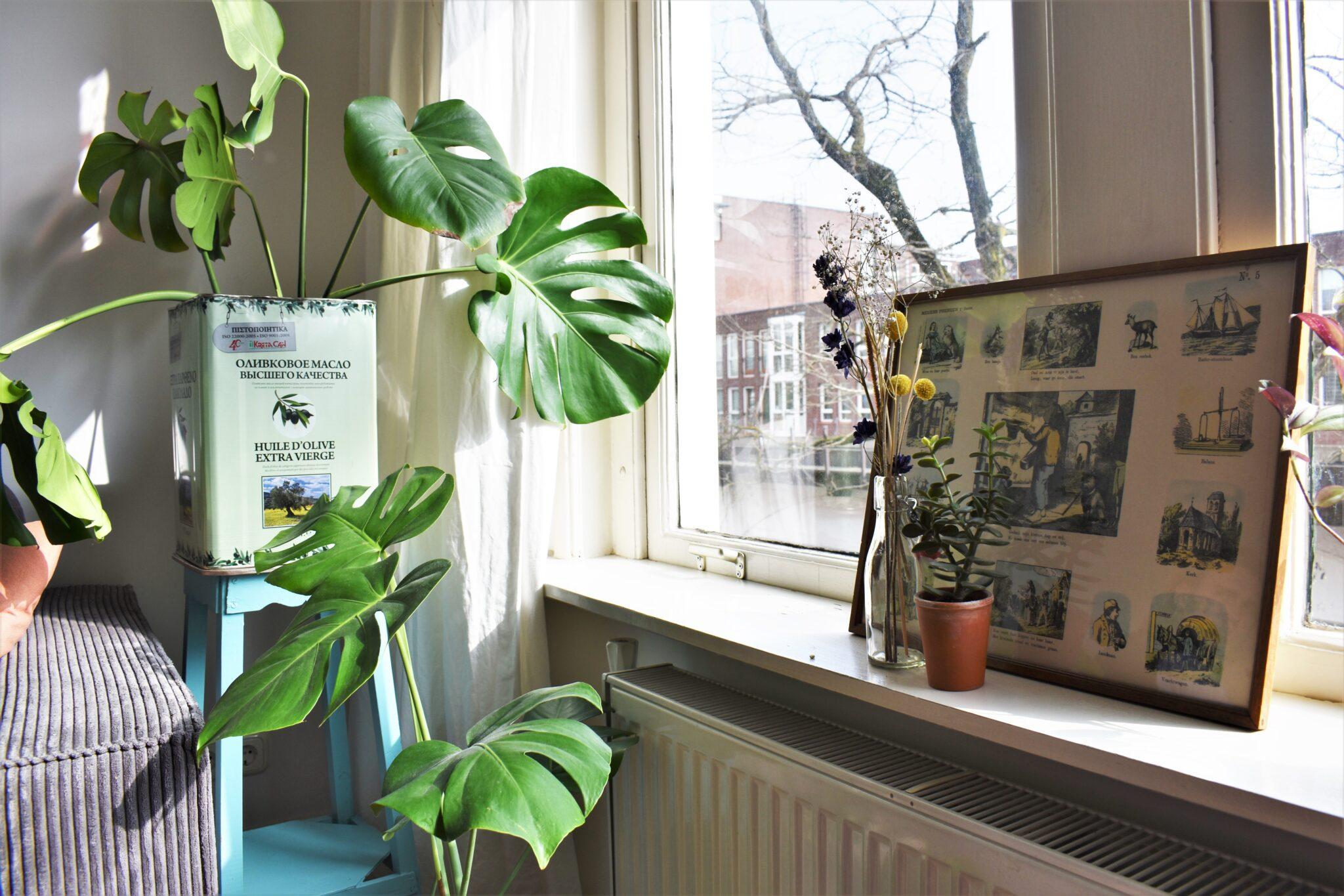 binnenkijken bij annabel en alex vensterbank