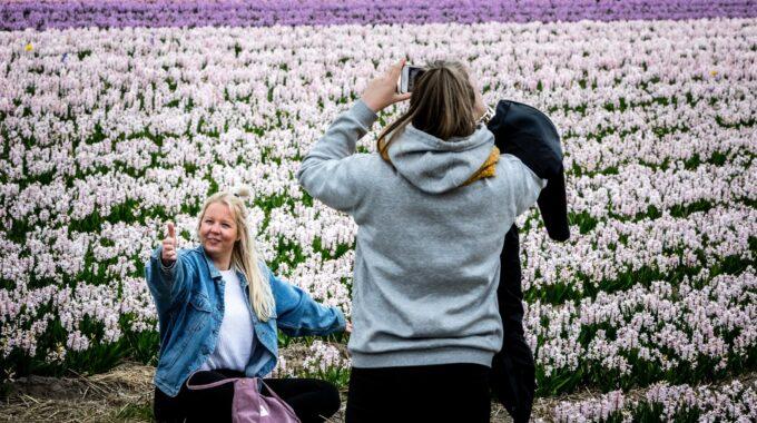 Maandacties april 2021 Rotterdampas bloembollentour