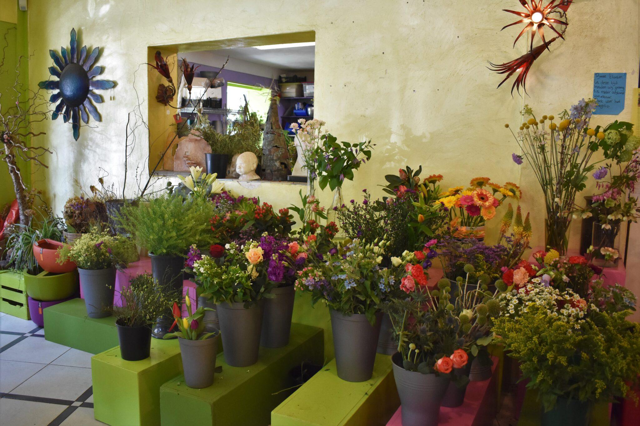 Bloemen Geschikt Rotterdam
