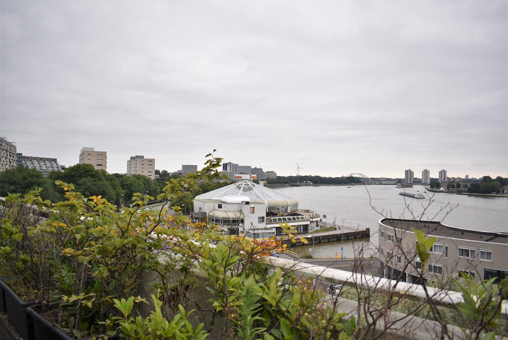 binnenkijken bij ester havenziekenhuis uitzicht tropicana