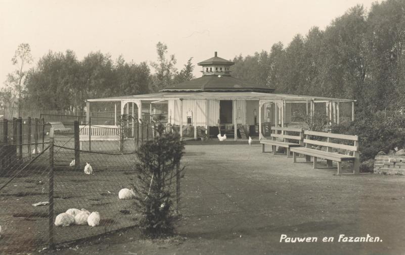 Gezicht in het Plaswijk Park, bij witte konijnen, pauwen en fazanten paviljoen. stadsarchief 1923