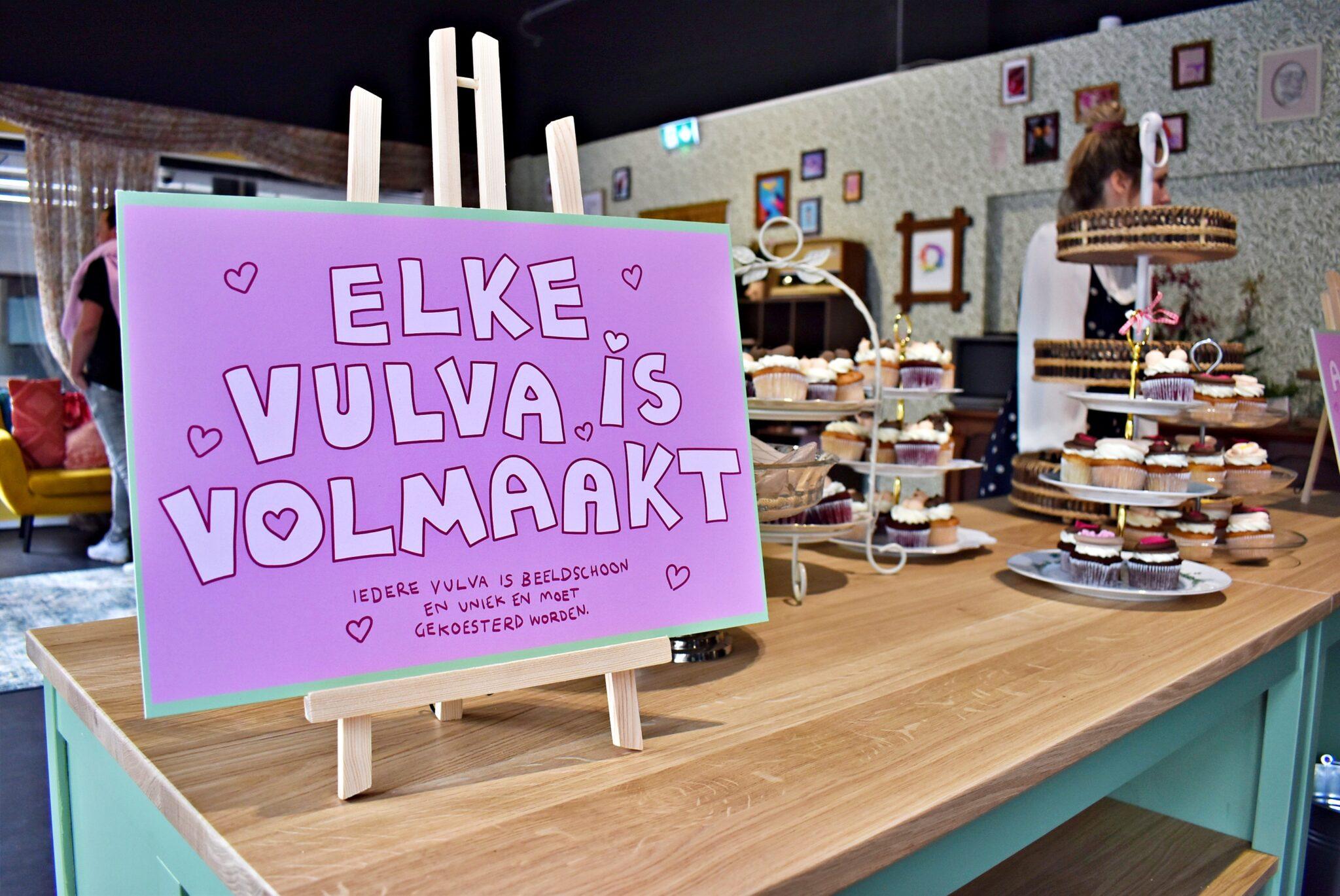 sex education pop up vulva cupcakes