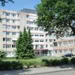Kievitshorst
