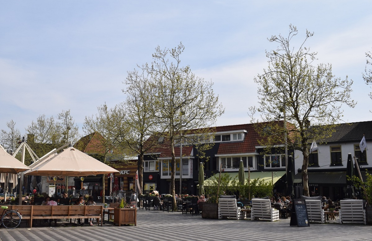 Pieter Vreedeplein