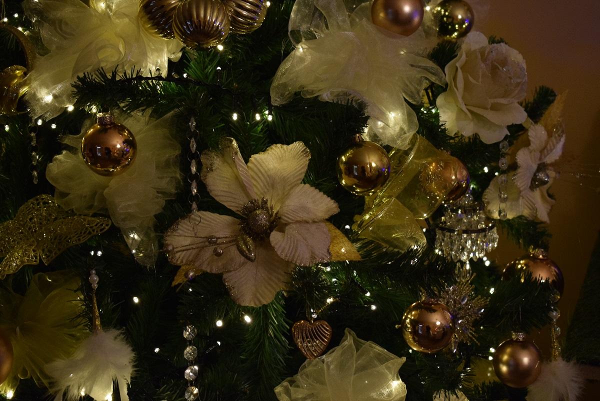 Kerstboom binnenkijken Martijn Richard