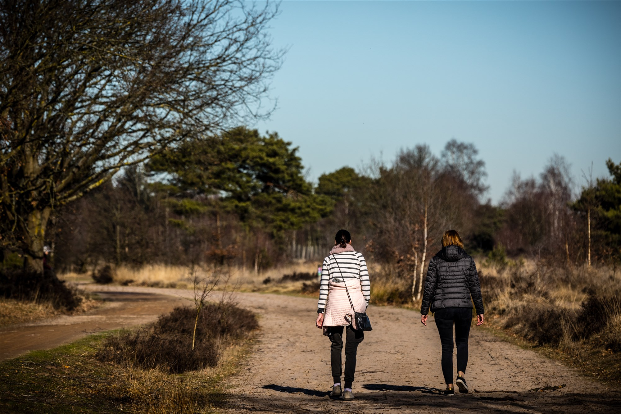 wandelen natuur